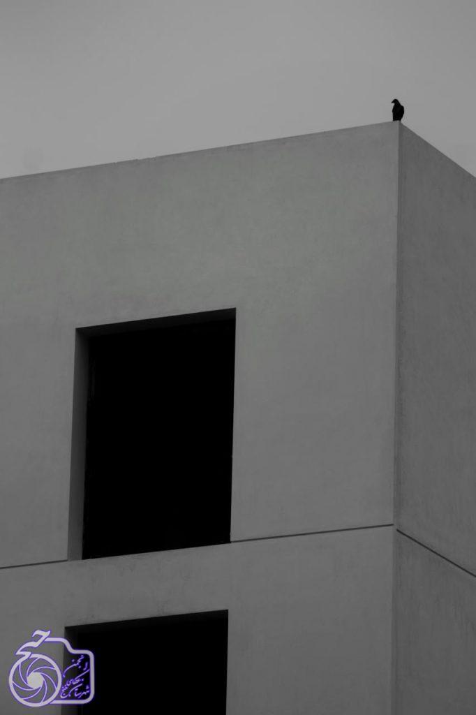 کد اثر: 15